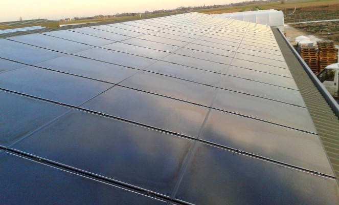 Large number of solar panels installed on top of a warehouse in Cambridgeshire